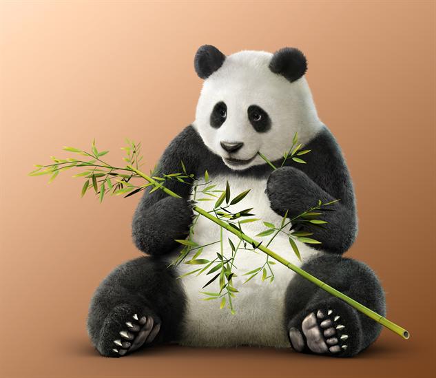 tekken-characters 21-panda
