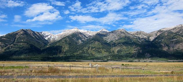 the-5-best-national-parks-for-wildlife-spotting grandtetons