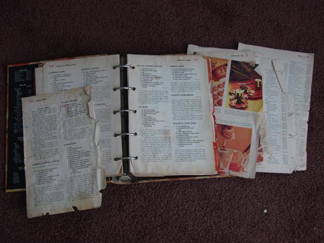 thrashed-cookbooks 7-bgh-interioruseme