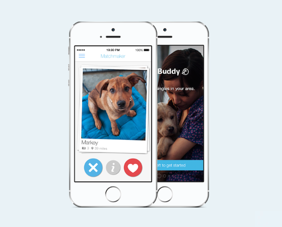 apps that have replaced tinder