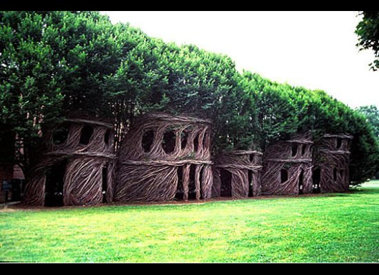 Artist patrick dougherty creates living tree houses for Arbre maison jouet