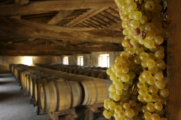 tuscany-wine castello-di-pomino