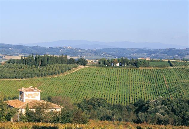tuscany-wine tenuta-di-castiglioni-ii