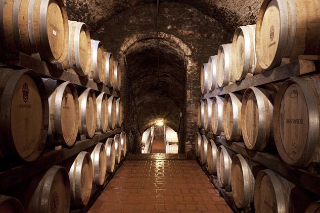 tuscany-wine tuscany-2