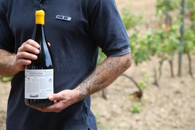 tuscany-wine tuscany-4