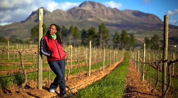 women-in-wine 9-women-wine